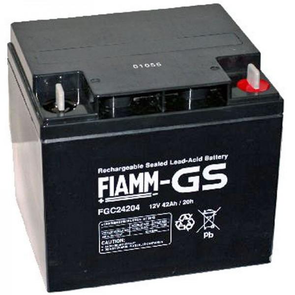 Fiamm FGC24207 batterij met M6 schroefaansluiting 12Volt 42Ah