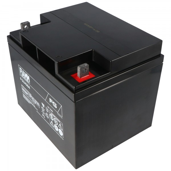 Fiamm FG24204 batterij 42Ah