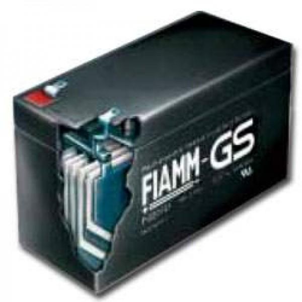 Fiamm MonoLite 2SLA300 loodzuurbatterij PB 2Volt 300Ah