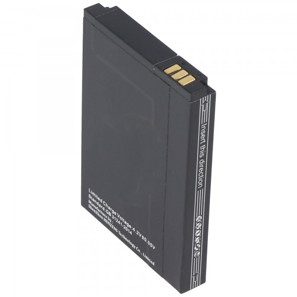 Caterpillar CAT B10-batterij UP704060AL als vervangende batterij van AccuCell